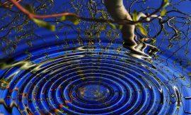 Cos'è la meditazione trascendentale