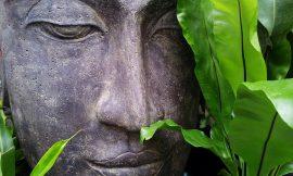 Imparare a meditare: 3 esercizi per principianti