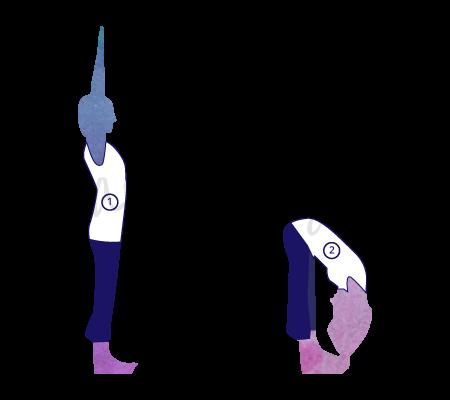 Padahastasana, (posizione delle mani ai piedi), variante dinamica